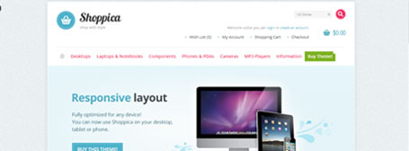 web site demo, wordpress tema